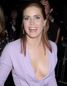 El escote de Amy Adams